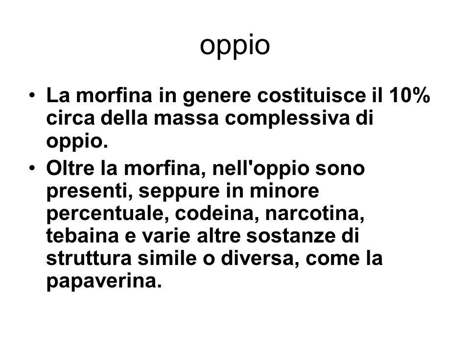 oppio La morfina in genere costituisce il 10% circa della massa complessiva di oppio.