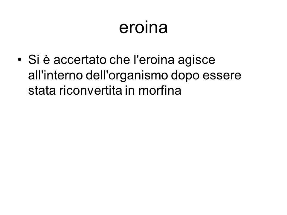 eroina Si è accertato che l eroina agisce all interno dell organismo dopo essere stata riconvertita in morfina.