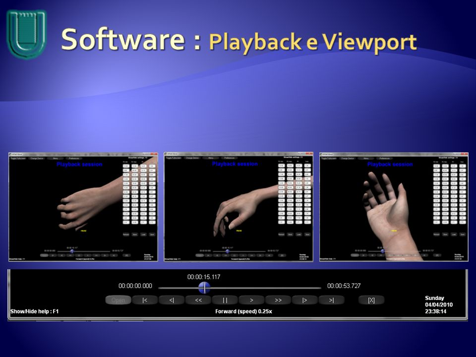 Software : Playback e Viewport