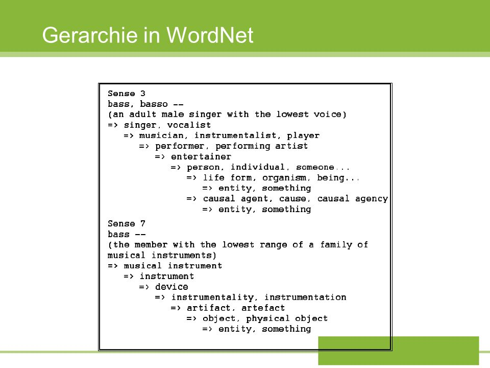 Gerarchie in WordNet 28