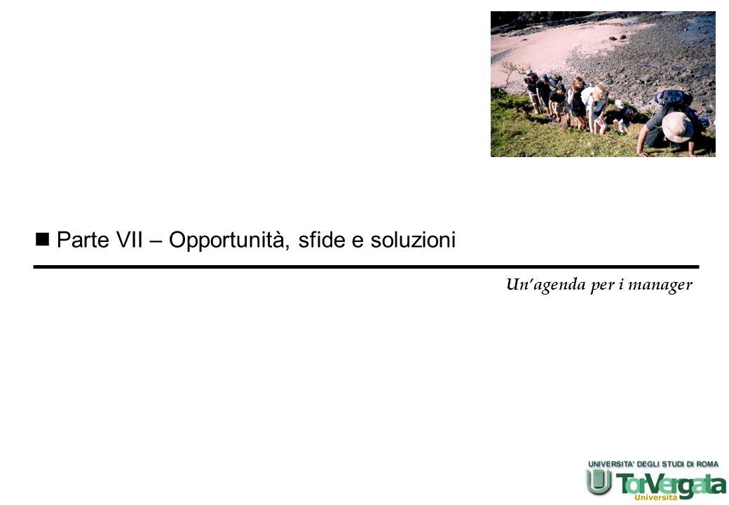 Parte VII – Opportunità, sfide e soluzioni