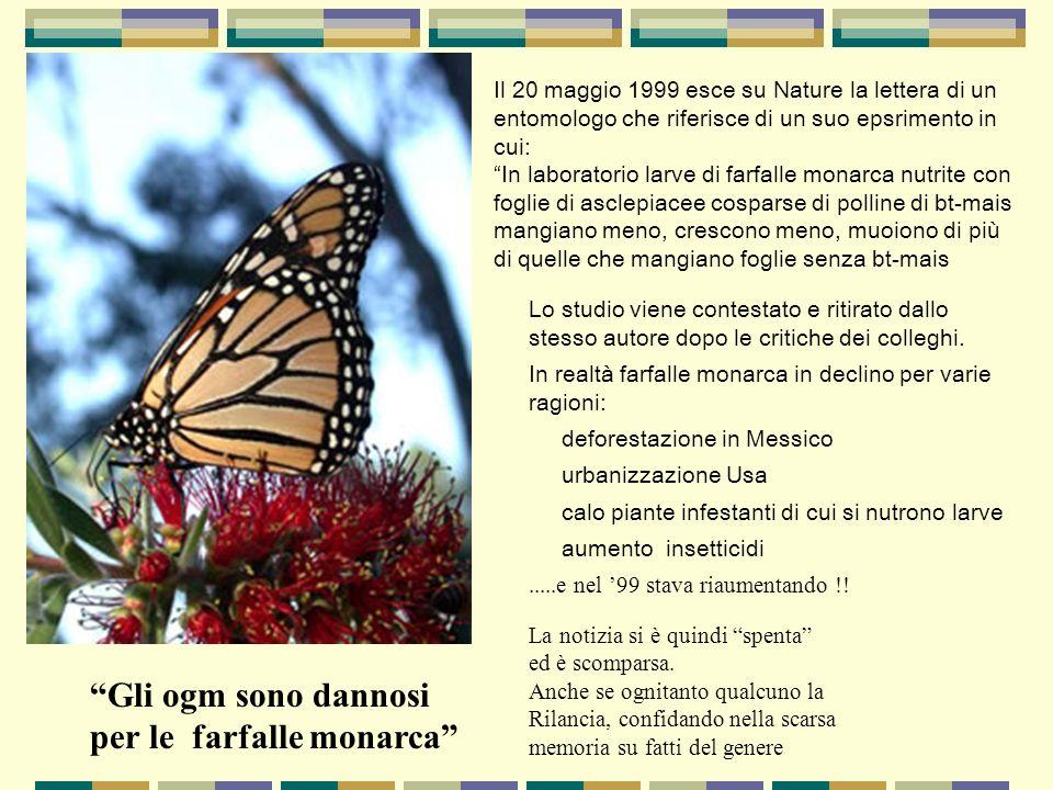per le farfalle monarca
