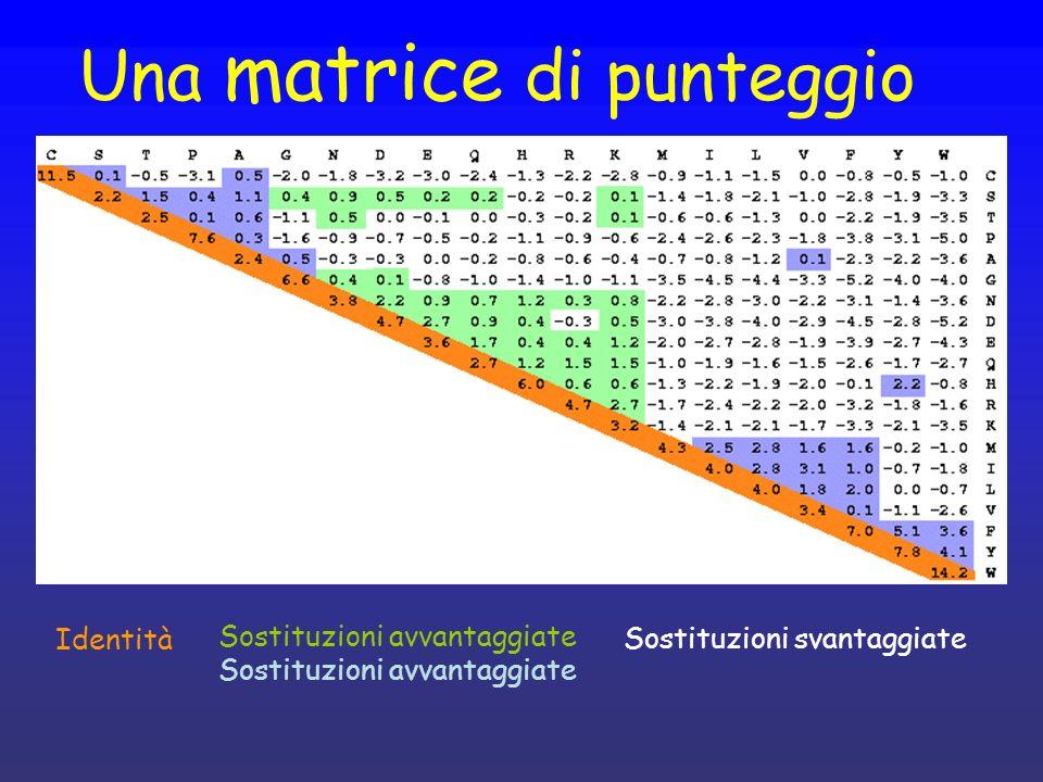 Una matrice di punteggio