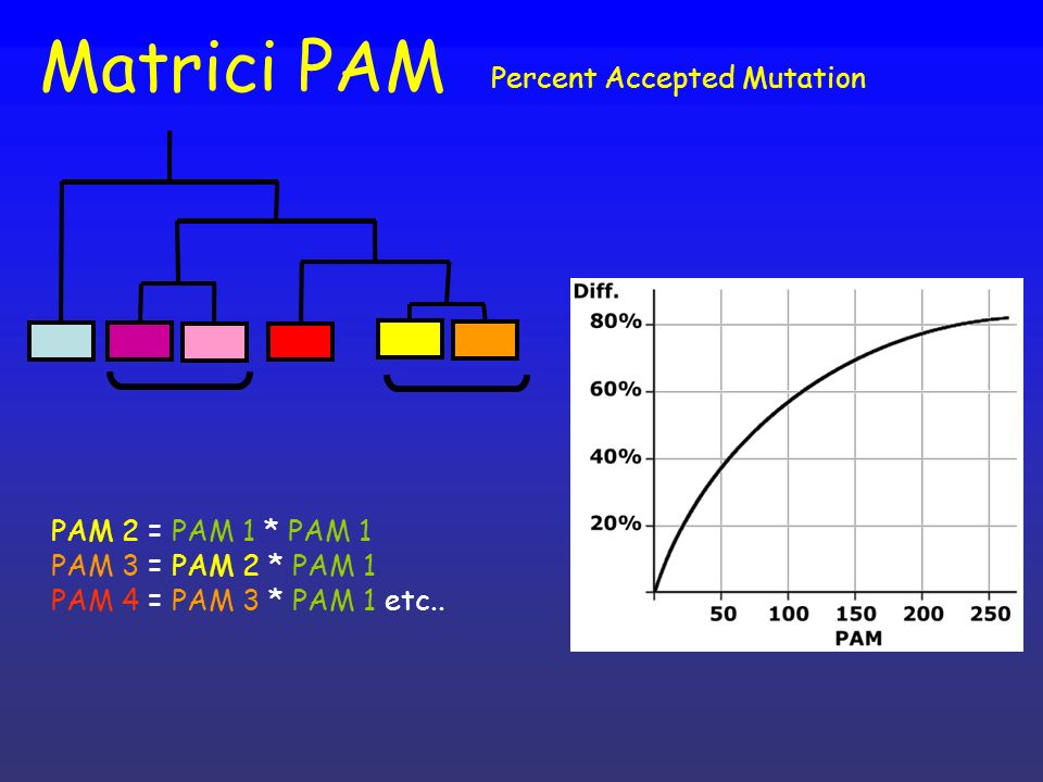 Matrici PAM Percent Accepted Mutation PAM 2 = PAM 1 * PAM 1