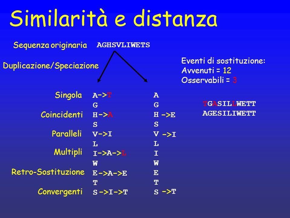 Duplicazione/Speciazione