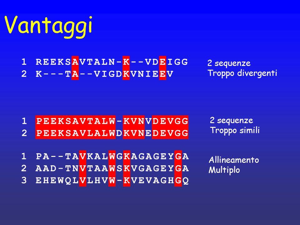 Vantaggi 1 R E K S A V T L N - D I G 2 1 P E K S A V T L W - N D G 2 1