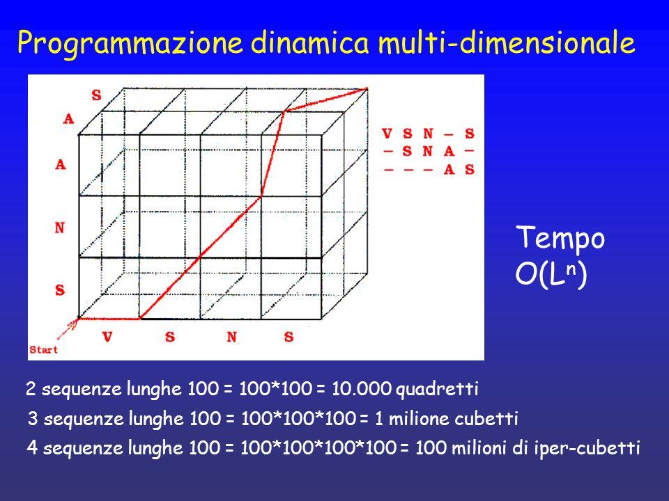 Programmazione dinamica multi-dimensionale