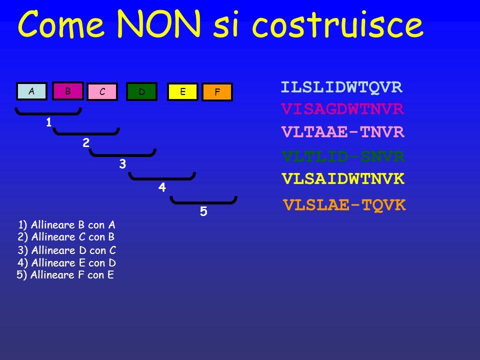 Come NON si costruisce ILSLIDWTQVR VISAGDWTNVR VLTAAE-TNVR VLTLID-SNVR