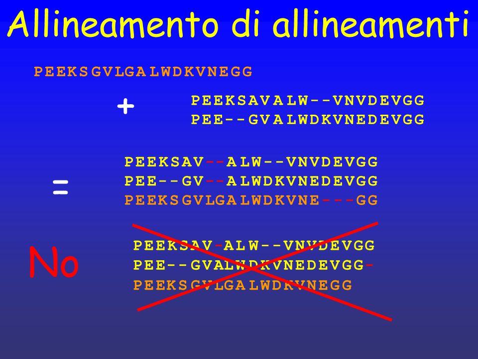 + = No Allineamento di allineamenti P E K S G V L A W D N P E K S A V