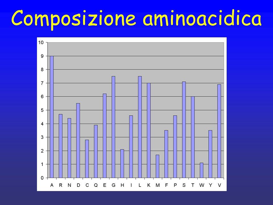 Composizione aminoacidica