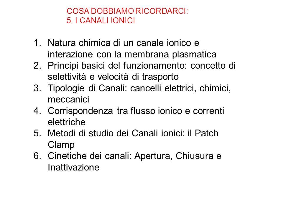 Tipologie di Canali: cancelli elettrici, chimici, meccanici
