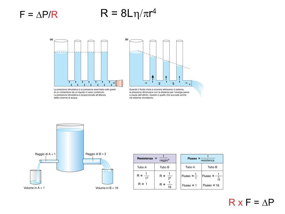 R = 8Lr4 F = P/R R x F = P
