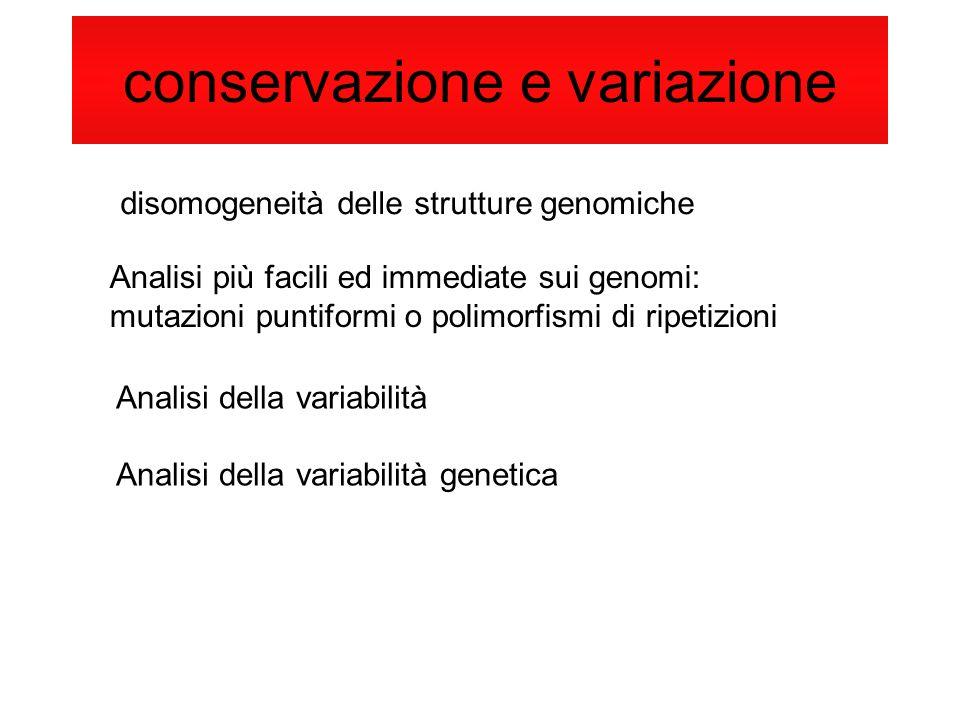 conservazione e variazione