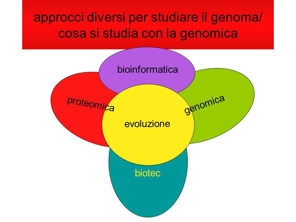 approcci diversi per studiare il genoma/ cosa si studia con la genomica