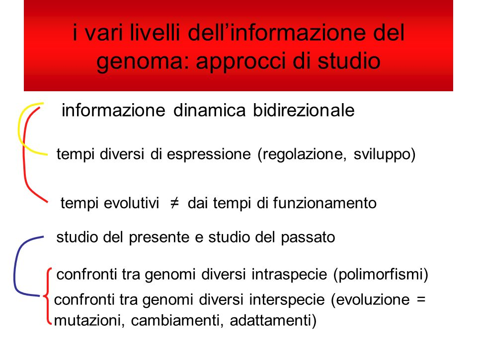 i vari livelli dell'informazione del genoma: approcci di studio