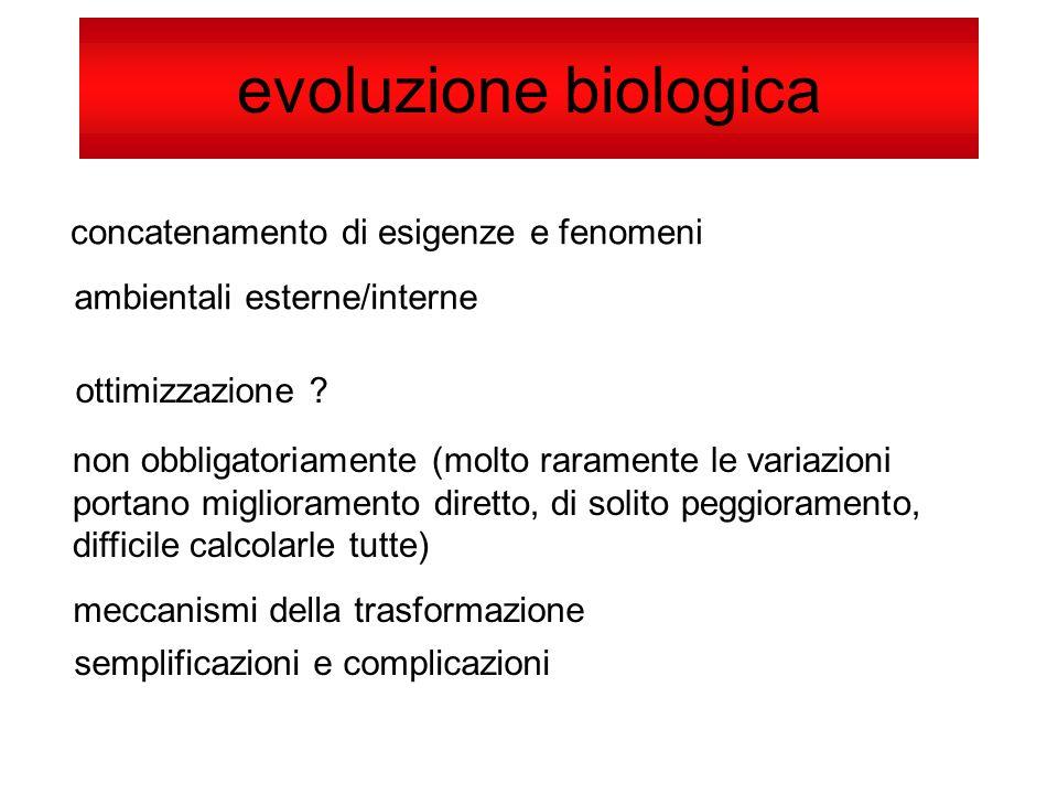 evoluzione biologica concatenamento di esigenze e fenomeni