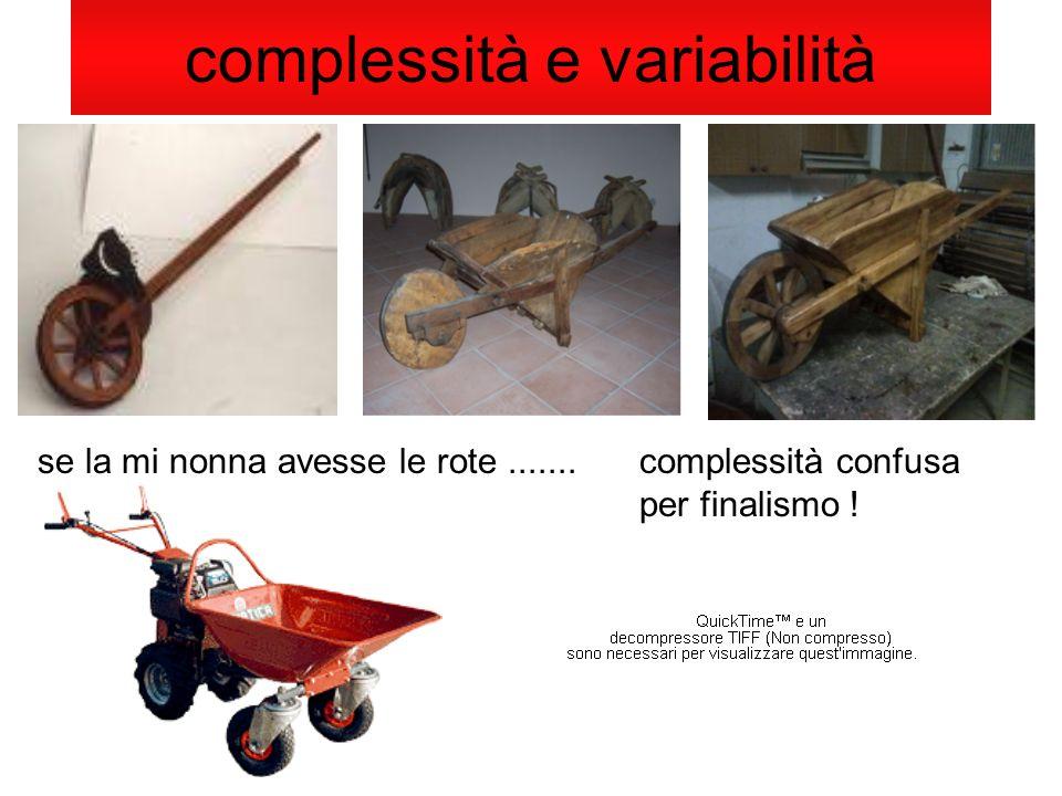 complessità e variabilità