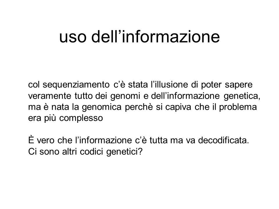 uso dell'informazione