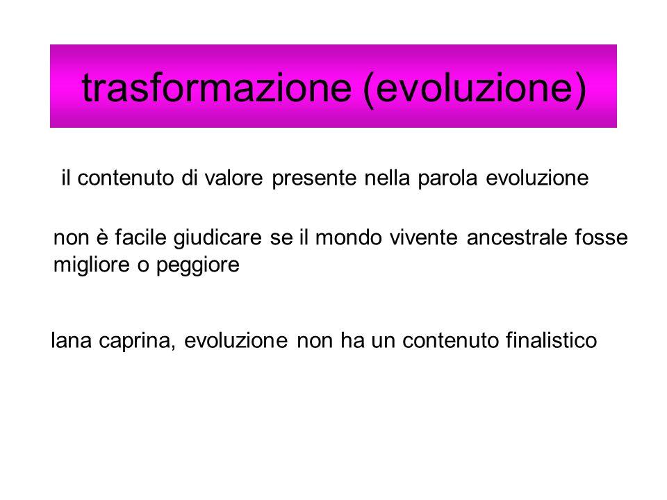 trasformazione (evoluzione)
