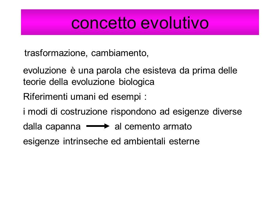 concetto evolutivo trasformazione, cambiamento,