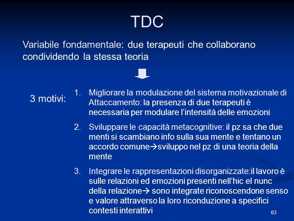 TDC Variabile fondamentale: due terapeuti che collaborano condividendo la stessa teoria.