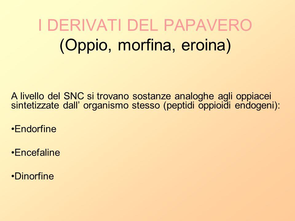 I DERIVATI DEL PAPAVERO (Oppio, morfina, eroina)