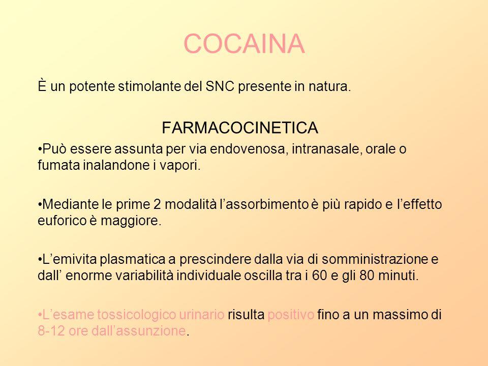 COCAINA FARMACOCINETICA