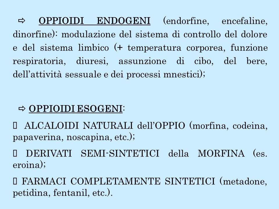  OPPIOIDI ENDOGENI (endorfine, encefaline, dinorfine): modulazione del sistema di controllo del dolore e del sistema limbico (+ temperatura corporea, funzione respiratoria, diuresi, assunzione di cibo, del bere, dell'attività sessuale e dei processi mnestici);