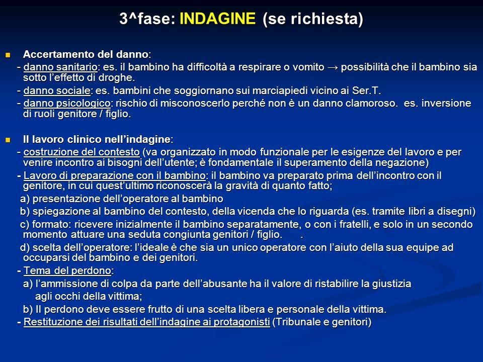 3^fase: INDAGINE (se richiesta)
