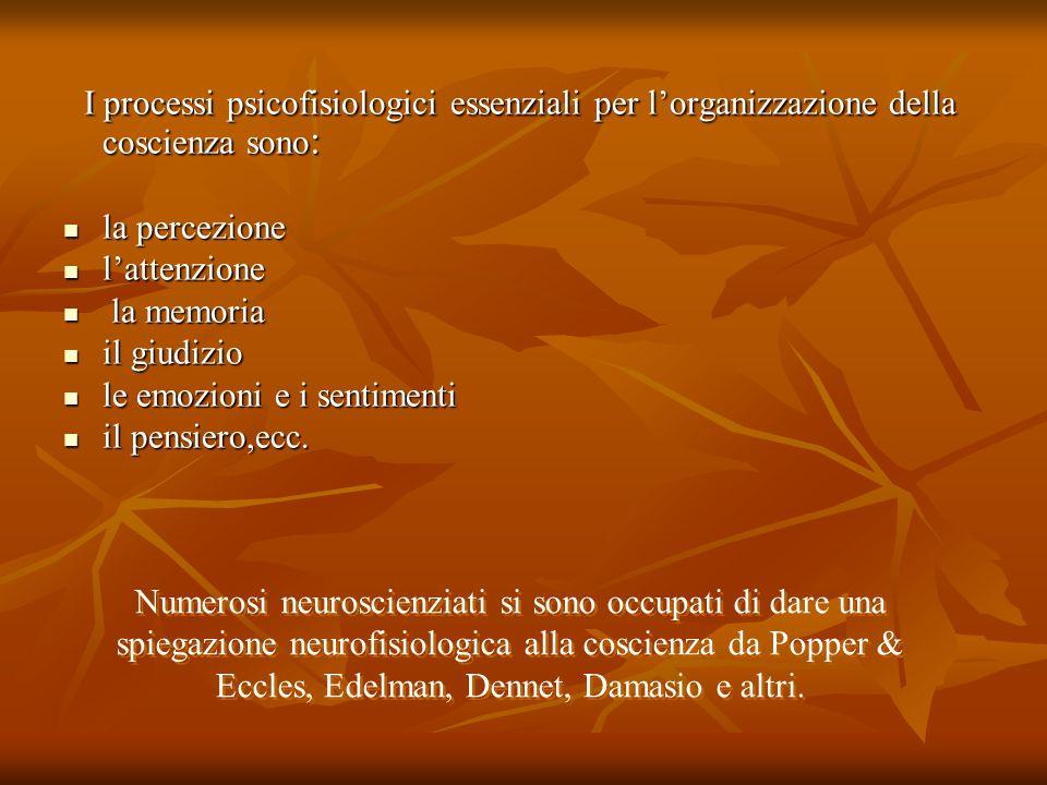 I processi psicofisiologici essenziali per l'organizzazione della coscienza sono: