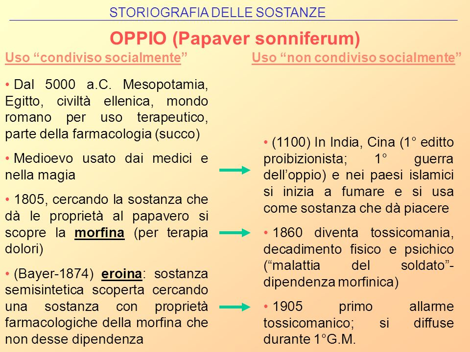 OPPIO (Papaver sonniferum)