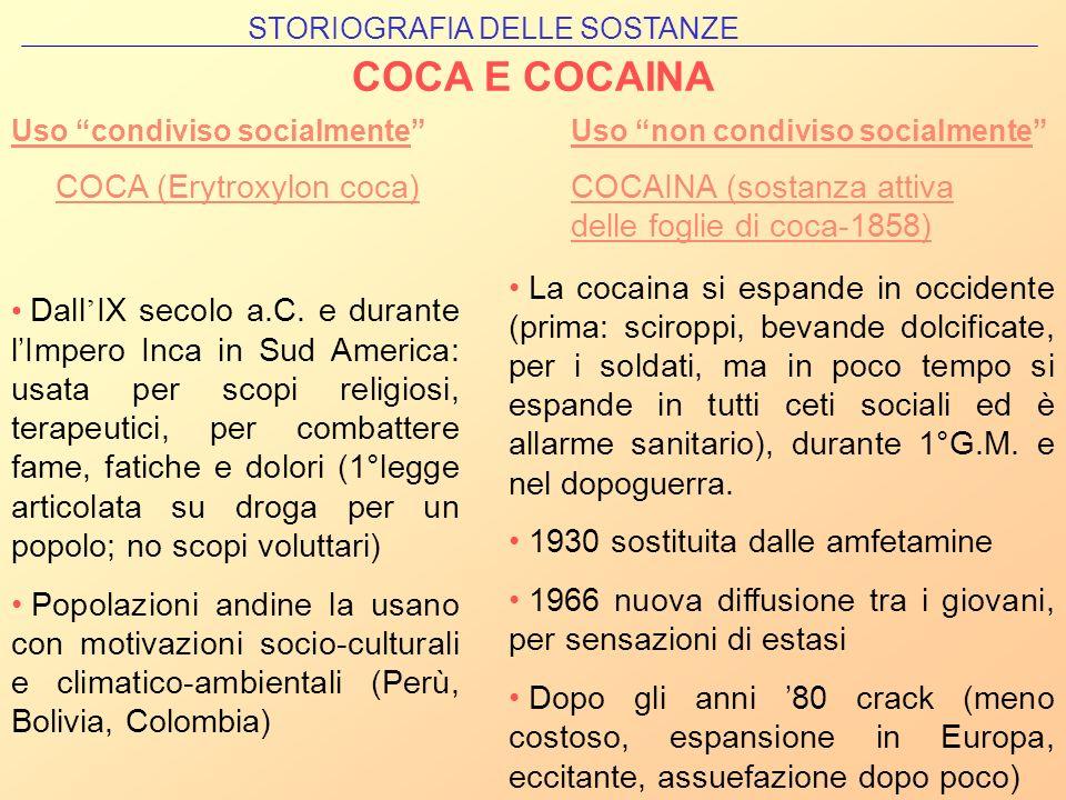 COCA E COCAINA COCA (Erytroxylon coca)