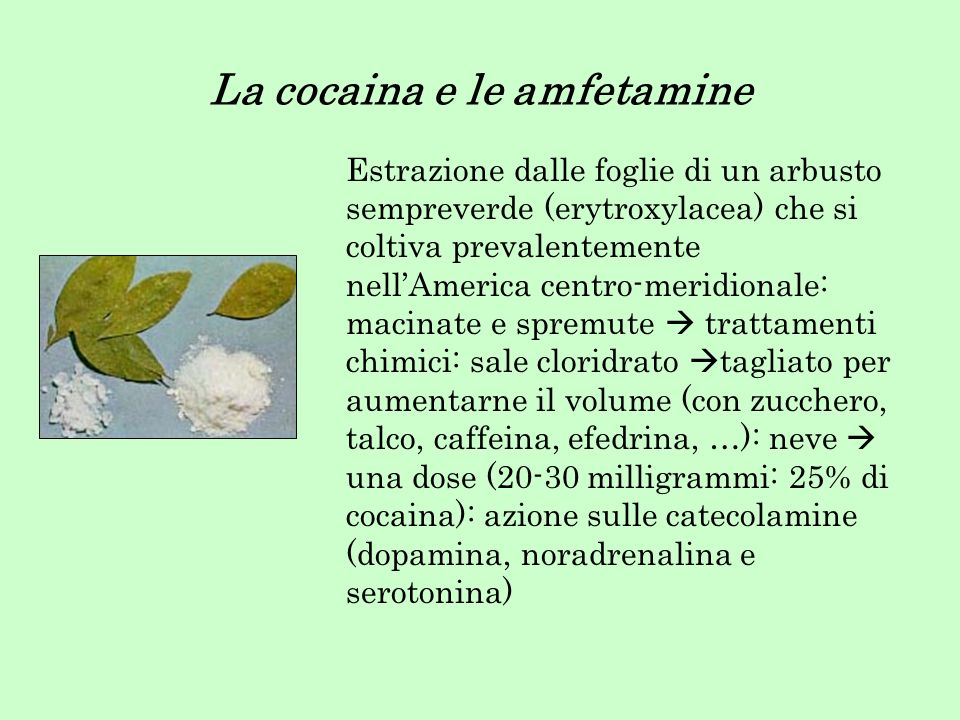 La cocaina e le amfetamine