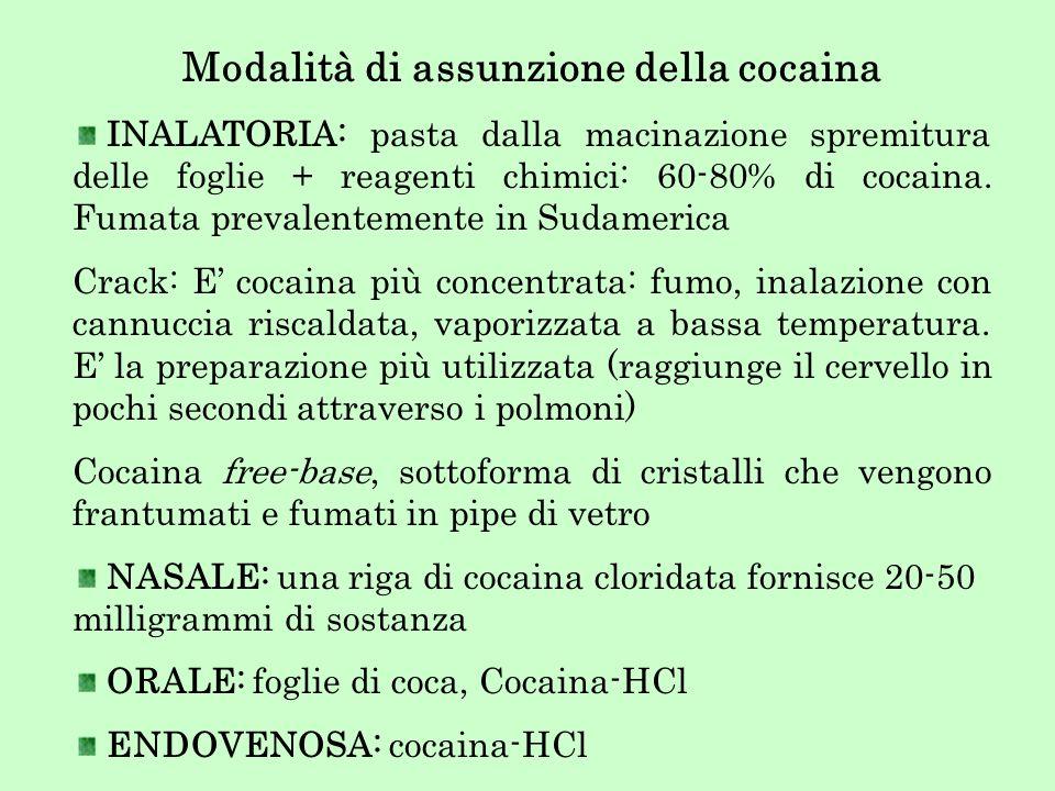 Modalità di assunzione della cocaina