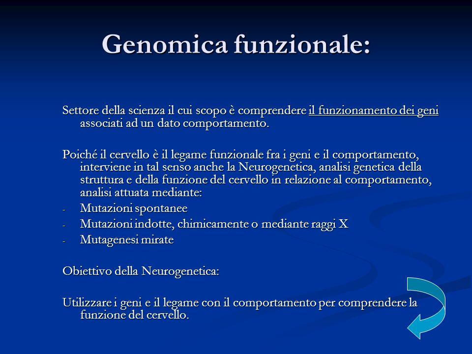 Genomica funzionale: Settore della scienza il cui scopo è comprendere il funzionamento dei geni associati ad un dato comportamento.