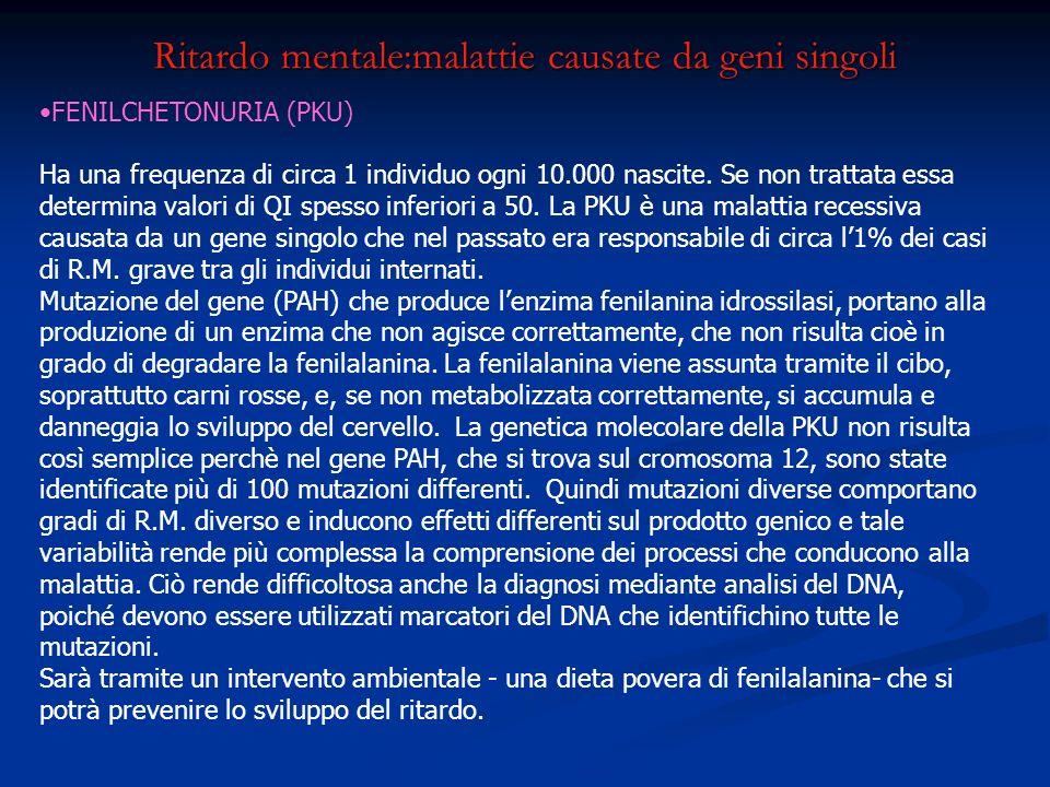 Ritardo mentale:malattie causate da geni singoli