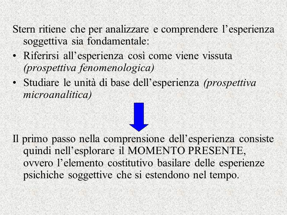 Stern ritiene che per analizzare e comprendere l'esperienza soggettiva sia fondamentale: