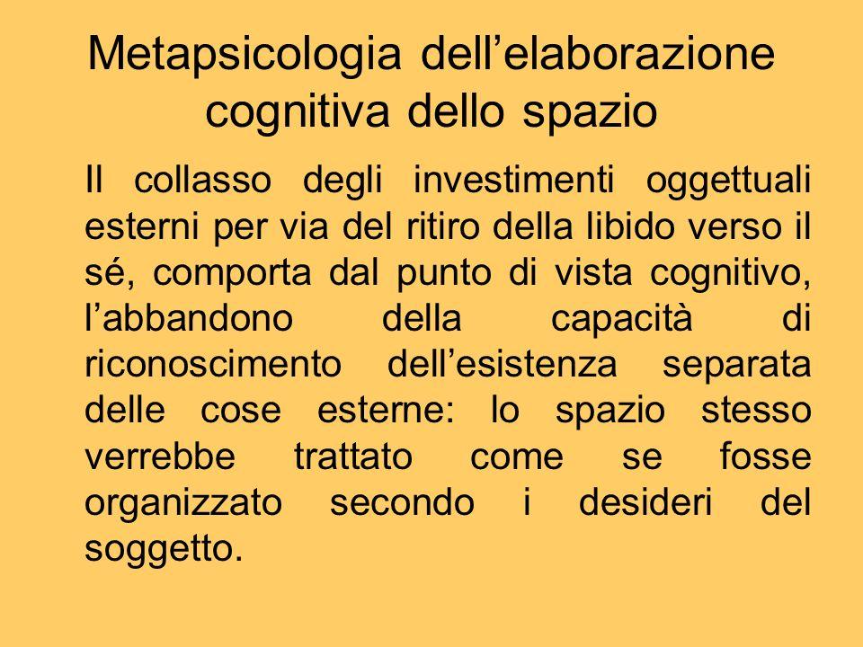 Metapsicologia dell'elaborazione cognitiva dello spazio