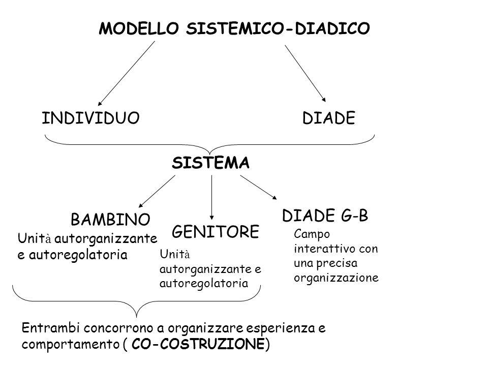 MODELLO SISTEMICO-DIADICO