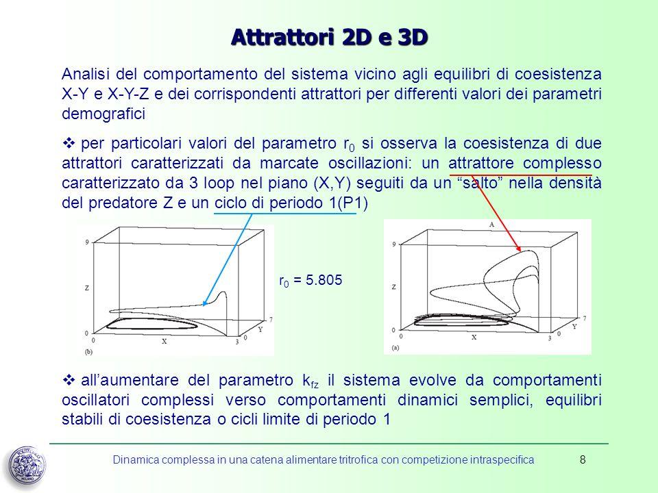 Attrattori 2D e 3D