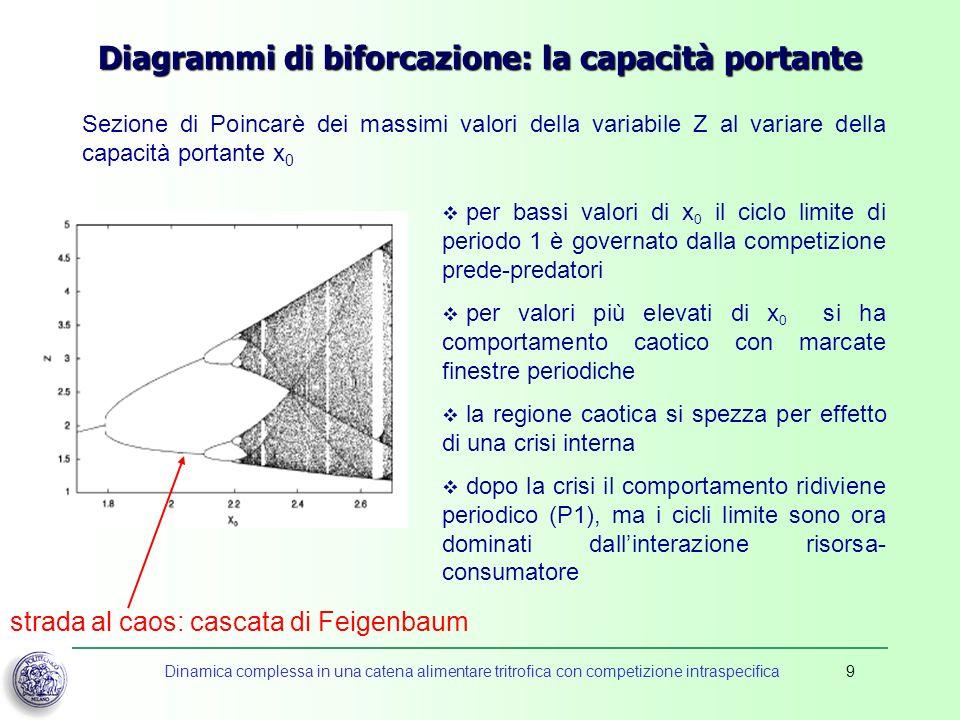 Diagrammi di biforcazione: la capacità portante
