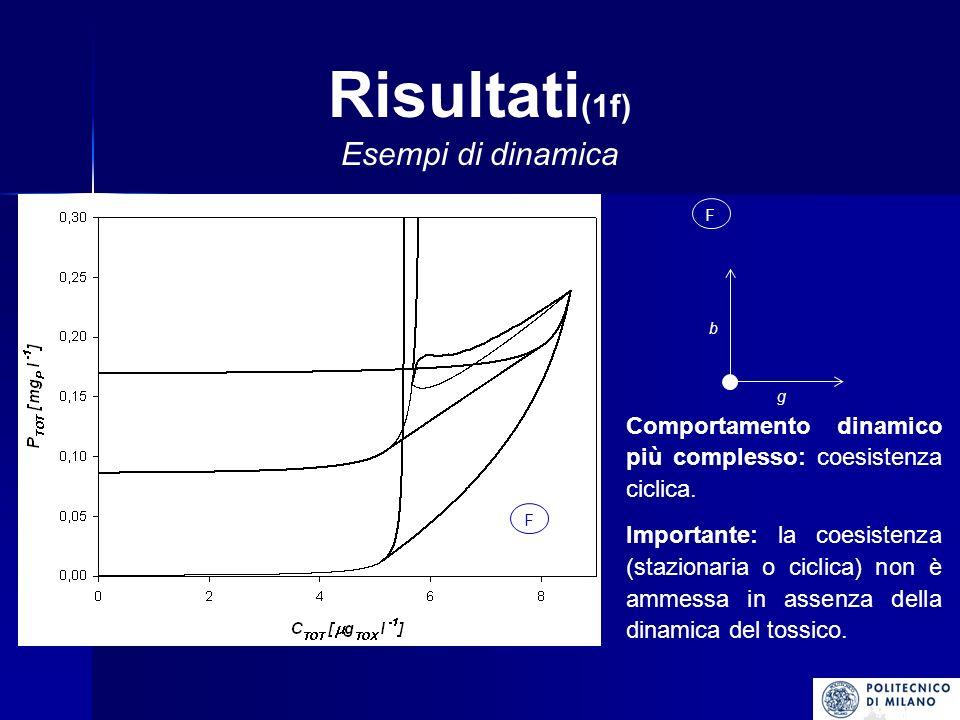 Risultati(1f) Esempi di dinamica