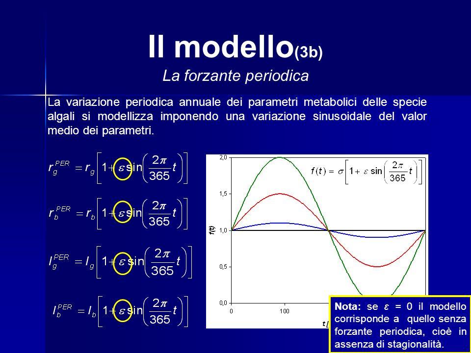 Il modello(3b) La forzante periodica