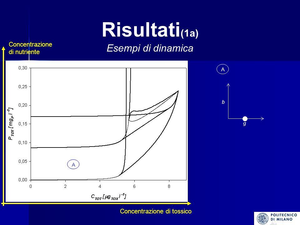Risultati(1a) Esempi di dinamica Concentrazione di nutriente