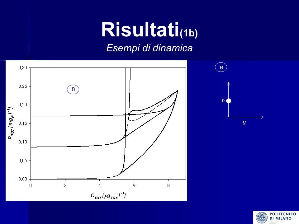 Risultati(1b) Esempi di dinamica B g b