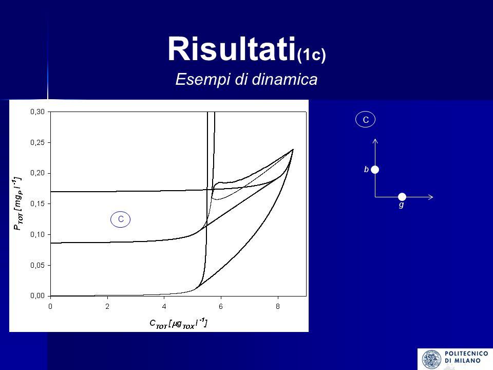 Risultati(1c) Esempi di dinamica C g b