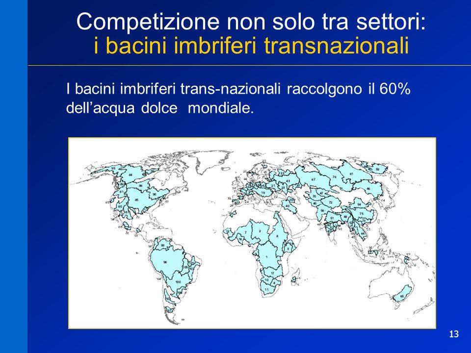 Competizione non solo tra settori: i bacini imbriferi transnazionali