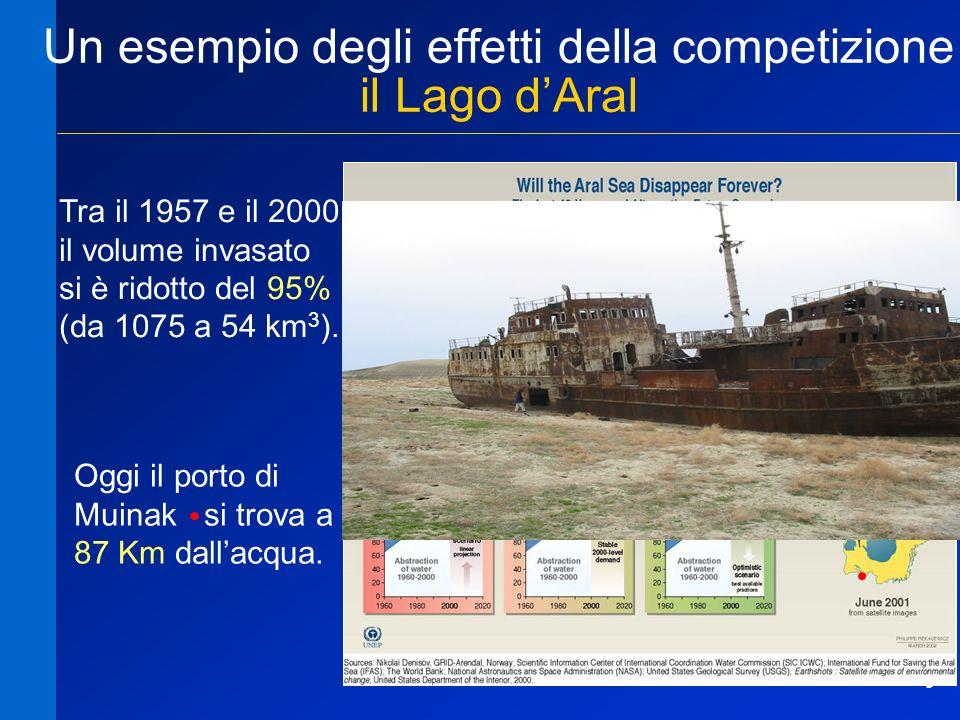 Un esempio degli effetti della competizione il Lago d'Aral