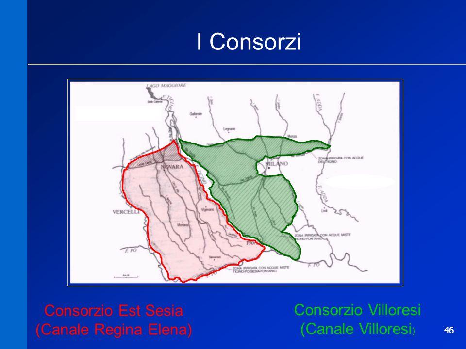 I Consorzi Consorzio Est Sesia (Canale Regina Elena)
