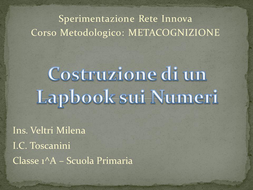 Sperimentazione Rete Innova Corso Metodologico: METACOGNIZIONE